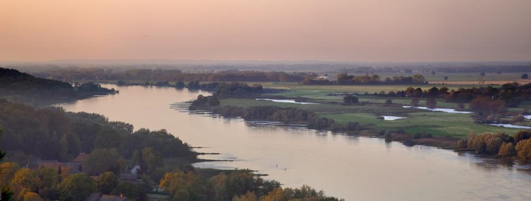 Blick über die Elbe vom Aussichtsturm Am Kniepenberg