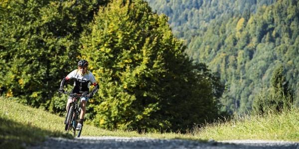 Mountainbiker in Mellau