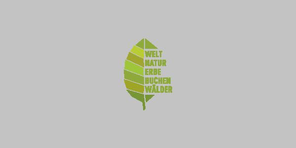UNESCO Weltnaturerbe Buchenwälder