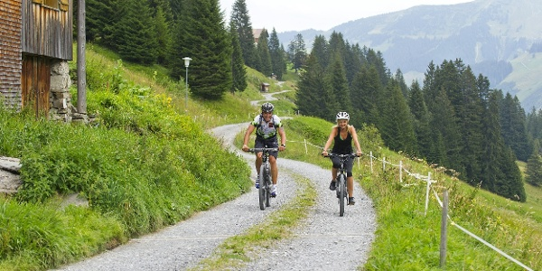 Mountainbiketouren in Damüls