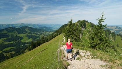 Auf dem Gratweg zwischen Hochgrat und Seelekopf