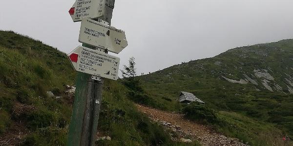 Blick zum Biwak Hoverla mit Gipfelanstieg im Hintergrund