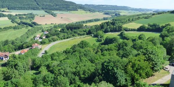 Ausblick von der Burg Lichtenberg
