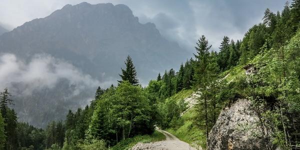 Vorsicht: Forstwege werden immer wieder durch Geschiebe aus den Bergen unterbrochen