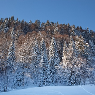Winterlandschaft in Lenggries