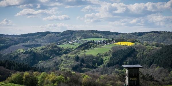Ausblick Richtung Roßbach