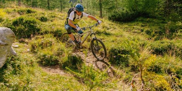 Bike-Trail-Wiese