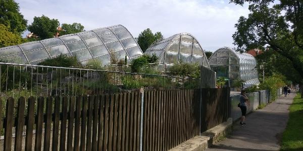 Gewächshüser des Botanischen Garten der Uni Graz mitten im Villenviertel