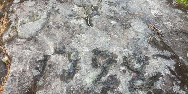Metsurinkivi Stone