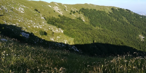 der nördliche Abhang des Punta di Montemaggiore