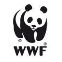 Profilbild von Anja Szczesinski / WWF Wattenmeerbüro