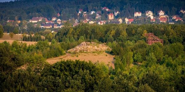 Ausblick vom Kienberg auf den Forstgarten