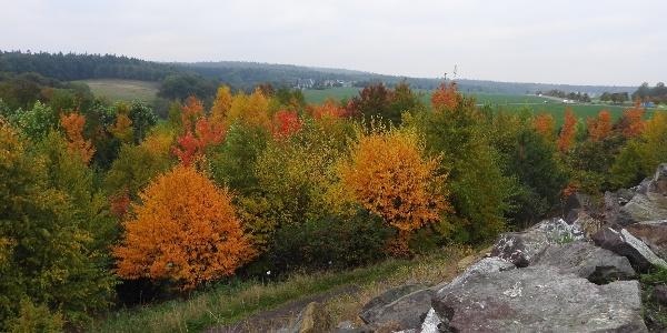 Blick von den Appalachen im Forstgarten