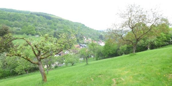 Blick auf Frankelbach