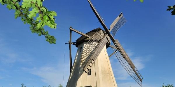 Windmühle Großenherse