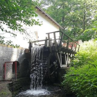 Niemöllers Mühle