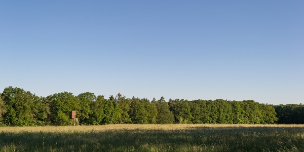Blick über Felder