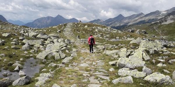 Auf dem Landshuter Höhenweg wandern wir vom Pfitscher Joch westwärts zum Nusserkopf (2.350m), ehe wir wenig später auf dem Weg 4a über die Griebalm zu unserem Ausgangspunkt zurückwandern.