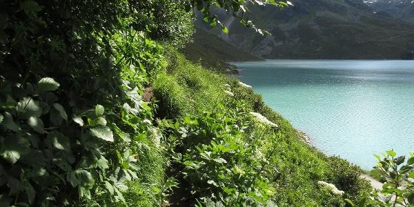 Auf schmalem Pfad oberhalb des Silvrettastausees