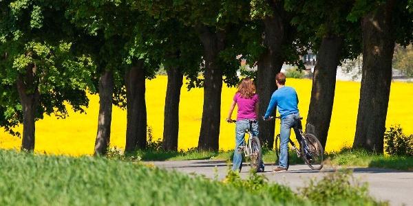 Hellweg-Fahrrad-Allee