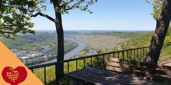 """Unterwegs auf dem Moselsteig Seitensprung """"Moseltalschanzen"""""""