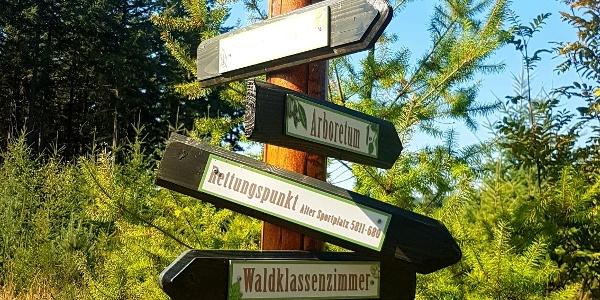 Damscheid Waldlehrpad