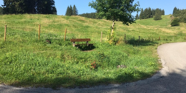 Ruhebank entlang des Wegs zum Buchenberg