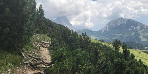 Schmale Pfade am Dachsteinmassiv