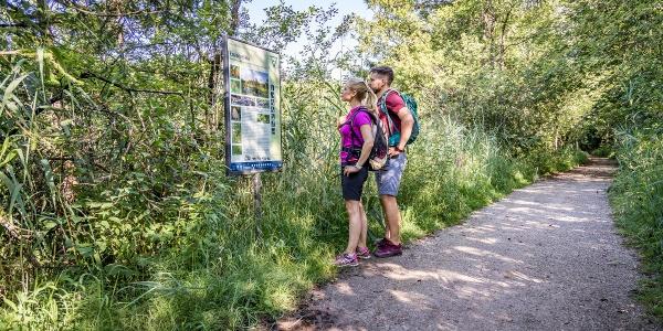 Wandern im Naturschutzgebiet Eggstätt-Hemhofer Seenplatte