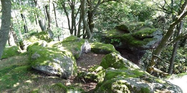 Rahnfels Felsenlandschaft
