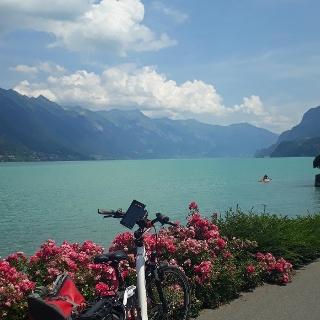 Fahrradweg am Brienzersee