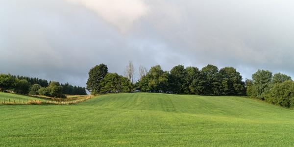 Ausblick über Wiesen