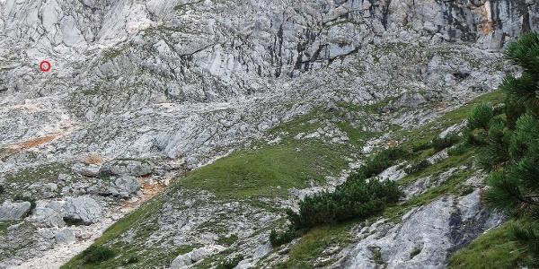 Pfadspur oberhalb der Latschenzone (Einstieg markiert)