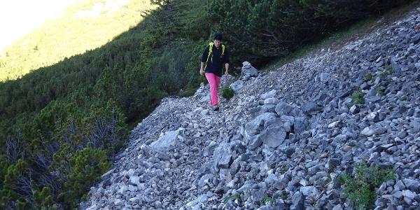 (Tag 2: Toni-Gaugg-Höhenweg) Von der Pleisenhütte führt der markierte Weg zunächst unschwierig durch den Latschengürtel des Vorderkars.