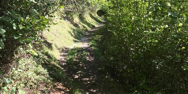 Trail nach Karrösten