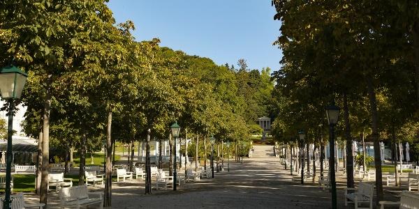 A. Unser Einstieg ist die Hauptallee des Kurparks mit dem Mozarttempel
