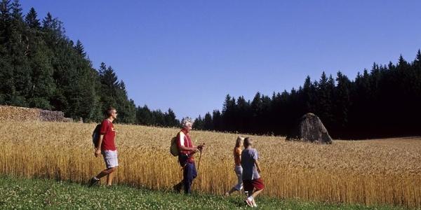 Foto: Archiv Waldviertel Tourismus