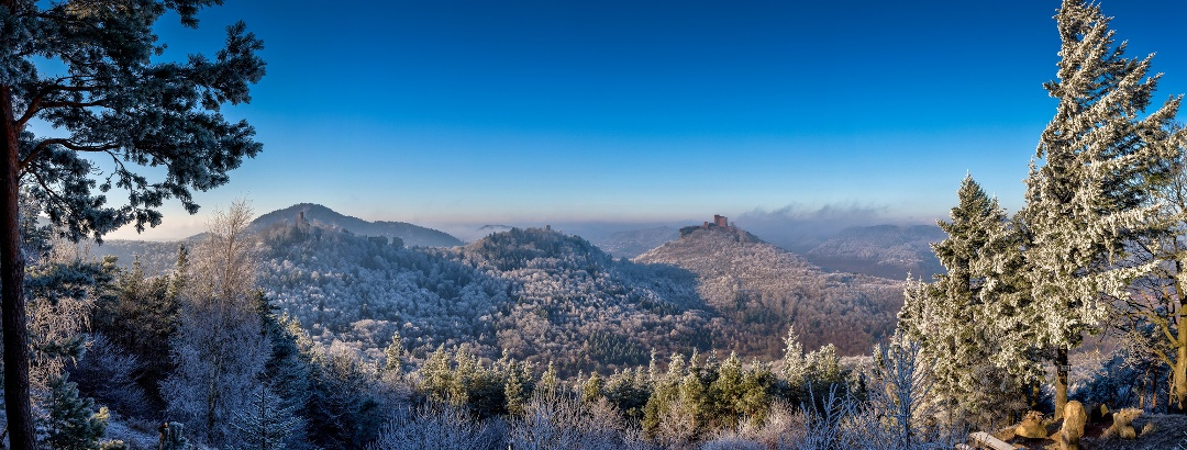 Blick auf die Burg Trifels, die Ruine Anebos und die Münz