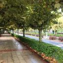 Street in Villava