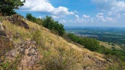 Lejtősztyepp a Sár-hegyen, háttérben a Mátrai Erőmű