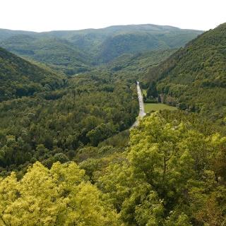 Blick vom Schwarzberg über das Helenental auf den Hohen Lindkogel