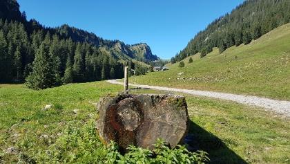 Tobelalpen im Bregenzerwald