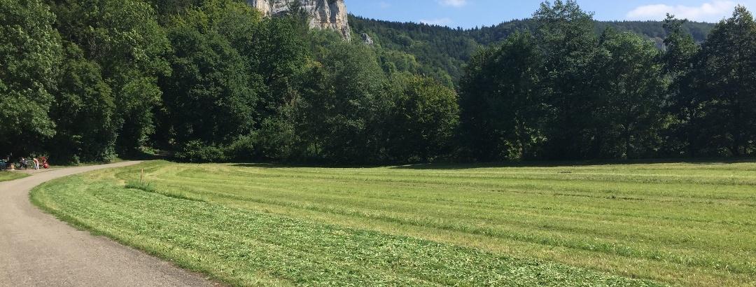 Donau-Radweg bei Mühlheim a.d.D.