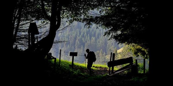 Unterwegs im Naturpark Almenland