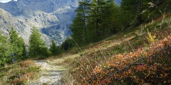 Blick vom Aufstieg auf den Mont Lapassé zur Cime du Gelas