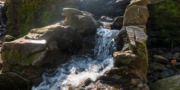 A vízben gazdag Telgárthy-rét látványos végpontja túránknak