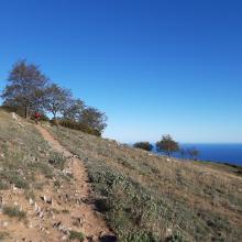 Sentiero zum Monte Acuto