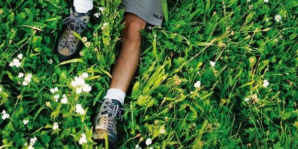 Bad Birnbach - Wanderer liegt im Gras