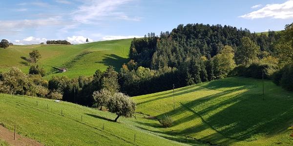 Typische Landschaft im Ohmstal
