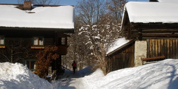 Winterwanderweg bei Pfarrkirche Flachau